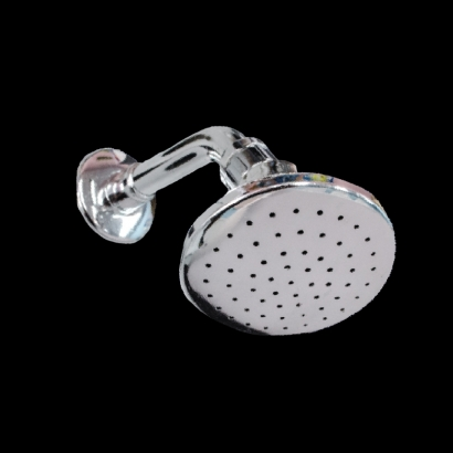 Goldolphin Single Function Overhead Shower Rose with Bent Arm GDA150S4