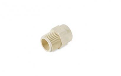 Eurapipe CPVC Male Adaptor Plastic BSP Thread (151)